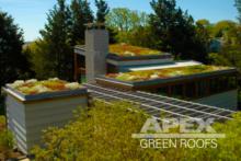 derrough_ShelterIsland_Residence_greenroof
